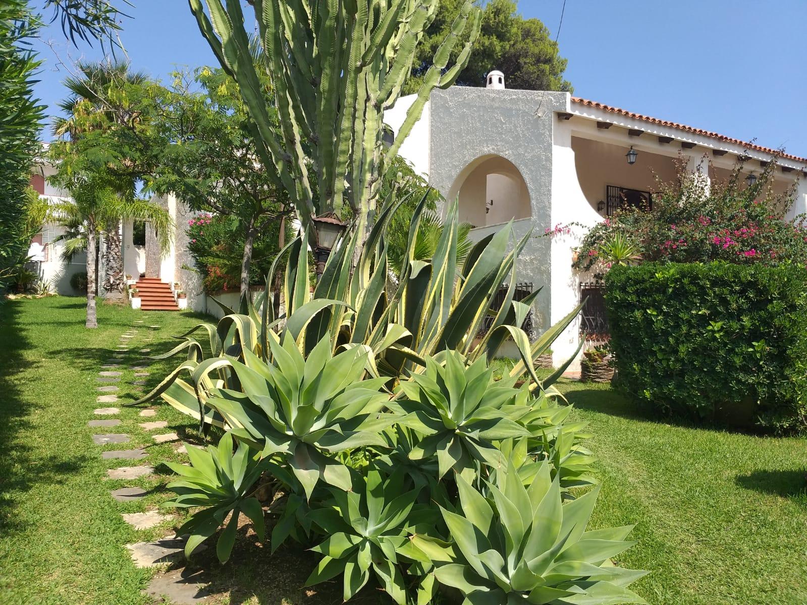 luxury villa sicily, Giardino